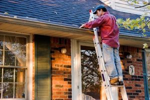 gutter-cleaning-in-brookfield-illinois-home