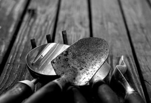 black and white image of gardening tools