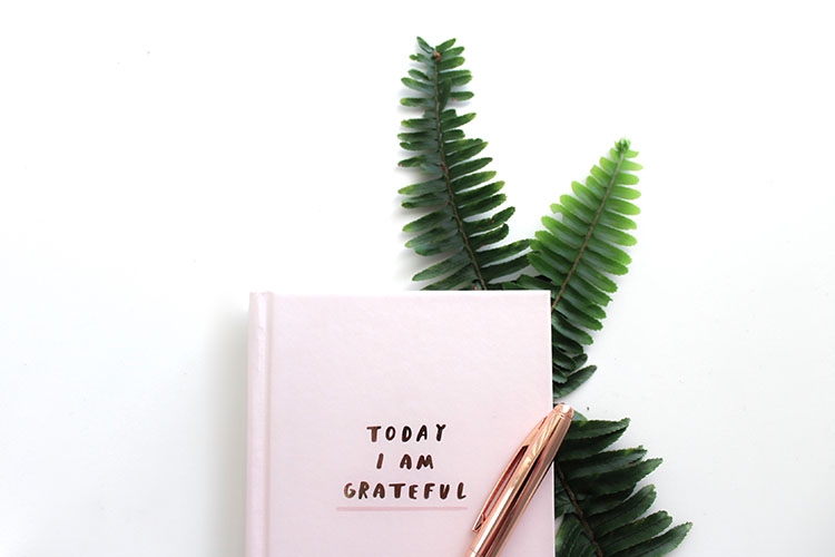 gratitude notebook on a fern